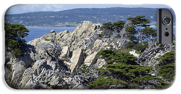 Point Lobos State iPhone Cases - Trees Amidst the Cliffs in Californias Point Lobos State Natural Reserve iPhone Case by Bruce Gourley