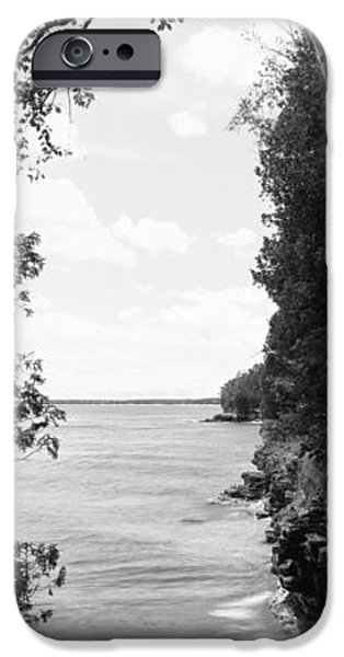 Chicago iPhone Cases - Trees At The Lakeside, Cave Point iPhone Case by Panoramic Images