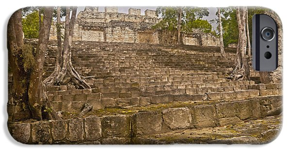 Tree Roots iPhone Cases - Trees Grow At Calakmul Ruins iPhone Case by Ellen Thane