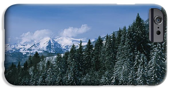 Winter Scene iPhone Cases - Trees In A Forest, Interlaken, Berne iPhone Case by Panoramic Images