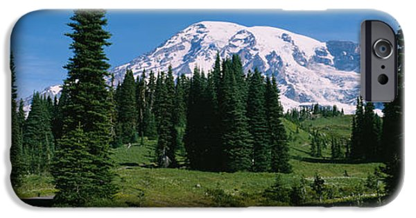 Rainy Day iPhone Cases - Trees In A Forest, Mt Rainier National iPhone Case by Panoramic Images