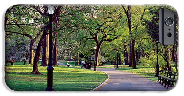 Pathway iPhone Cases - Trees In A Public Park, Central Park iPhone Case by Panoramic Images