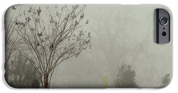 Mystic Setting Pyrography iPhone Cases - Trees in foggy morning iPhone Case by A J