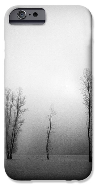 Fog Mist iPhone Cases - Trees in mist iPhone Case by Davorin Mance