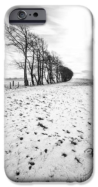 Snow iPhone Cases - Trees in snow Scotland ii iPhone Case by John Farnan