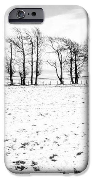 Trees in snow Scotland iv iPhone Case by John Farnan