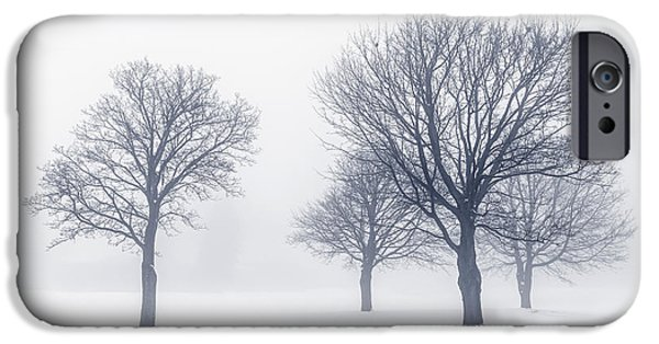 Snowy iPhone Cases - Trees in winter fog iPhone Case by Elena Elisseeva