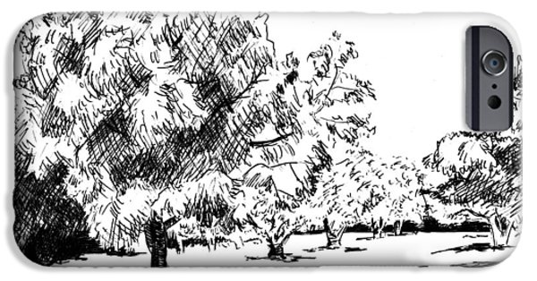 Location Drawings iPhone Cases - Trees iPhone Case by Masha Batkova