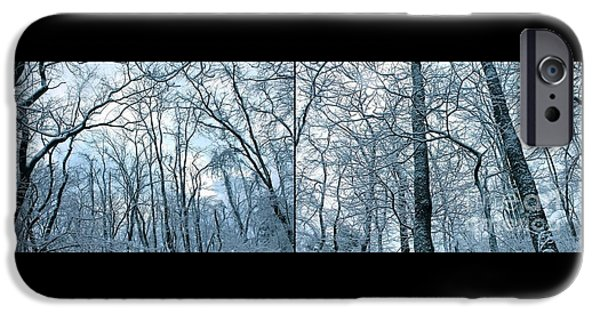 Snowy Day iPhone Cases - Trees of Winter  iPhone Case by Marie Spence