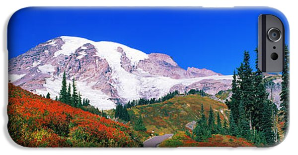 Rainy Day iPhone Cases - Trees On A Hill, Mt Rainier, Mount iPhone Case by Panoramic Images