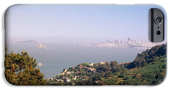 Sausalito iPhone Cases - Trees On A Hill, Sausalito, San iPhone Case by Panoramic Images