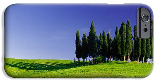 Horizon Over Land iPhone Cases - Trees On A Landscape, Val Dorcia, Siena iPhone Case by Panoramic Images
