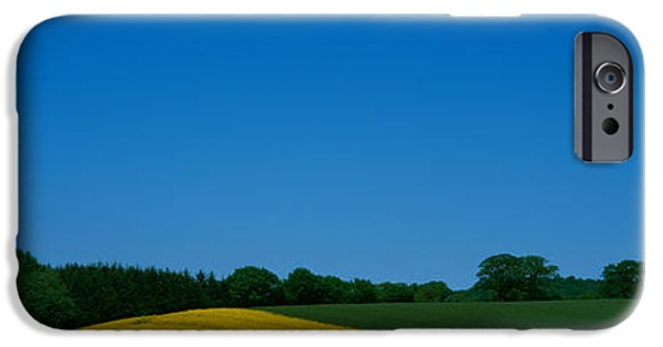 Rape iPhone Cases - Trees On A Rape Field, Germany iPhone Case by Panoramic Images