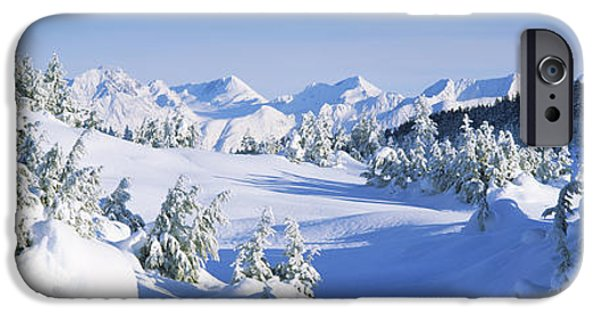 Snow Scene iPhone Cases - Trees On A Snow Covered Landscape iPhone Case by Panoramic Images