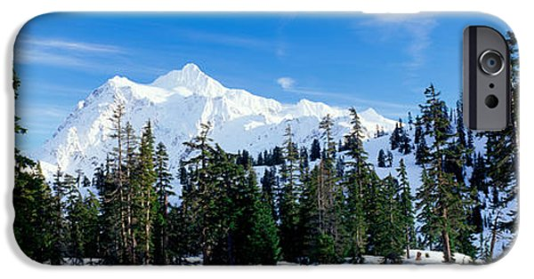 Snow iPhone Cases - Trees On A Snow Covered Mountain, Mt iPhone Case by Panoramic Images