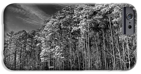 Ledge iPhone Cases - Trees On The Rivers Edge iPhone Case by Tom Gari Gallery-Three-Photography