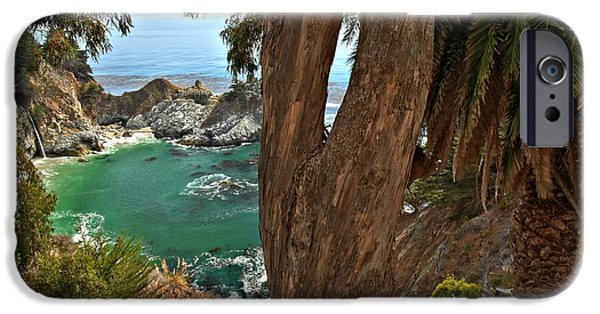 Big Sur Ca iPhone Cases - Trees Over McWay Falls iPhone Case by Adam Jewell