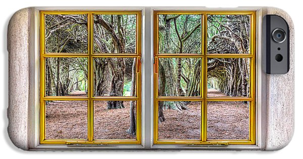 Cabin Window iPhone Cases - Trees Through a Window iPhone Case by Semmick Photo