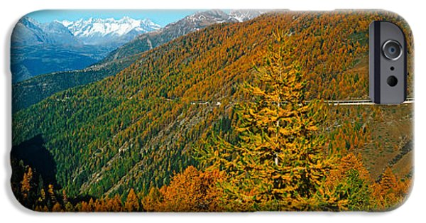 Mountain iPhone Cases - Trees With Road In Autumn At Simplon iPhone Case by Panoramic Images