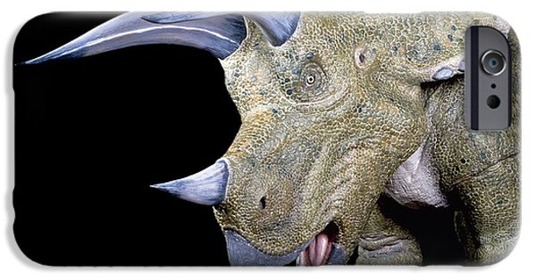 Triceratops iPhone Cases - Triceratops Dinosaur, Museum Model iPhone Case by Natural History Museum, London