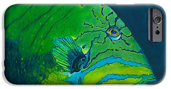 Triggerfish Paintings iPhone Cases - Triggerfish iPhone Case by Kevin Lancaster