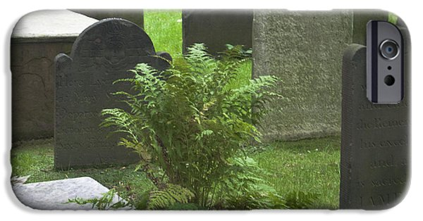 Headstones iPhone Cases - Trinity Fern Squared iPhone Case by Teresa Mucha