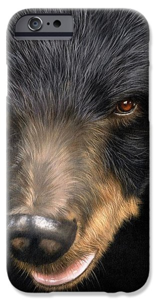Black Bear iPhone Cases - Trixie Moon Bear - In support of Animals Asia iPhone Case by David Stribbling