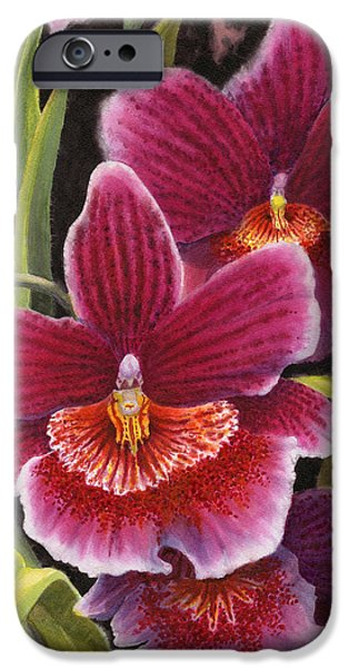 Tropical Plant iPhone Cases - Tropical Beauties 2 iPhone Case by Karen Wright