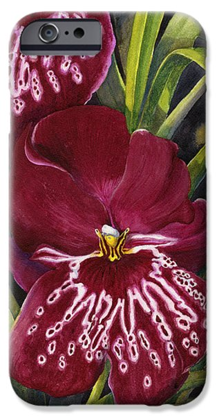 Tropical Plant iPhone Cases - Tropical Beauty 1 iPhone Case by Karen Wright