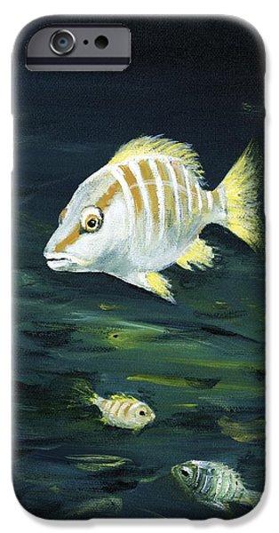 Marine iPhone Cases - Tropical Fish iPhone Case by Anastasiya Malakhova