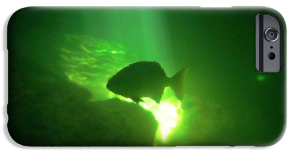 Halifax Photography By John Malone iPhone Cases - Tropical Fish Shilouette in a Cenote iPhone Case by Halifax photography by John Malone