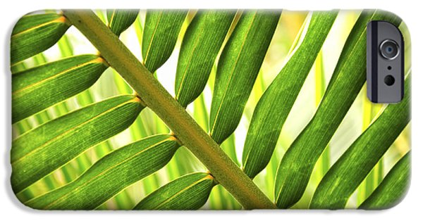 Botanical Photographs iPhone Cases - Tropical leaf iPhone Case by Elena Elisseeva