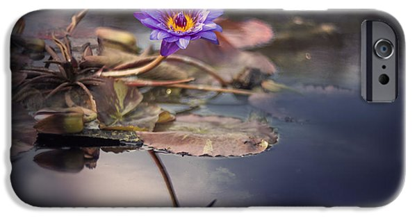 Purple Art iPhone Cases - Tropical Lily iPhone Case by Magda  Bognar