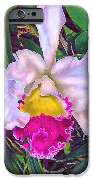 Cattleya iPhone Cases - Tropical Orchid iPhone Case by Jane Schnetlage