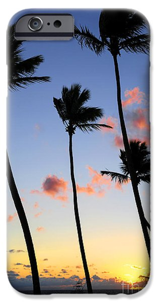 Caribbean Island iPhone Cases - Tropical sunrise iPhone Case by Elena Elisseeva