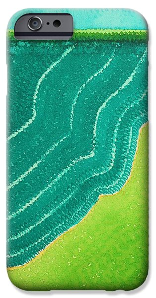 Printmaking iPhone Cases - Tropicalia original painting iPhone Case by Sol Luckman