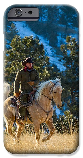 Snowy Day iPhone Cases - Trotting Palomino iPhone Case by Inge Johnsson
