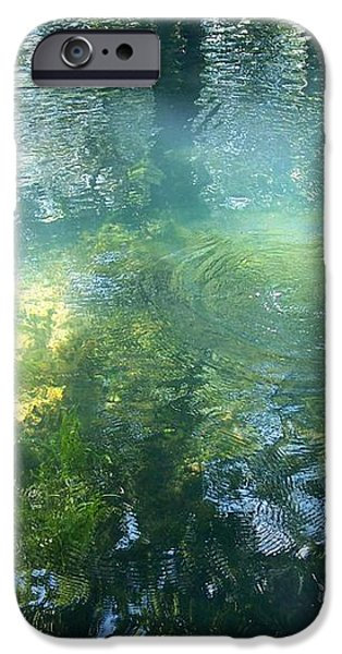 Trout Pond iPhone Case by Mary Wolf