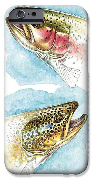 Flyfishing iPhone Cases - Trout Study iPhone Case by JQ Licensing