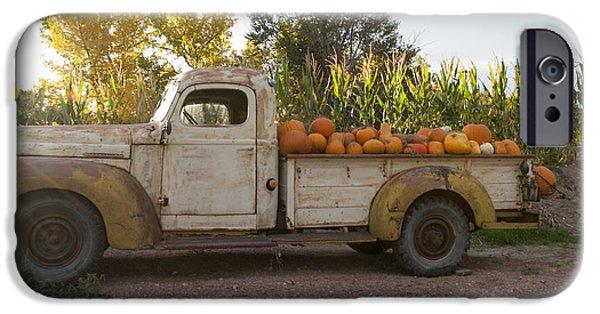 Crops iPhone Cases - Pumpkin Time iPhone Case by Juli Scalzi
