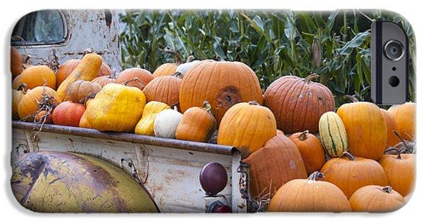 Crops iPhone Cases - Truckful of Pumpkins iPhone Case by Juli Scalzi