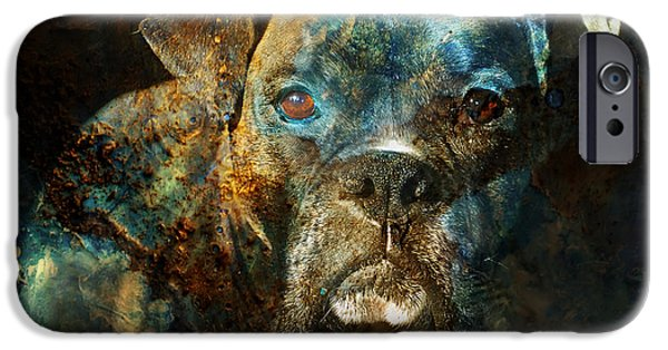 Boxer Dog iPhone Cases - True Colours iPhone Case by Judy Wood