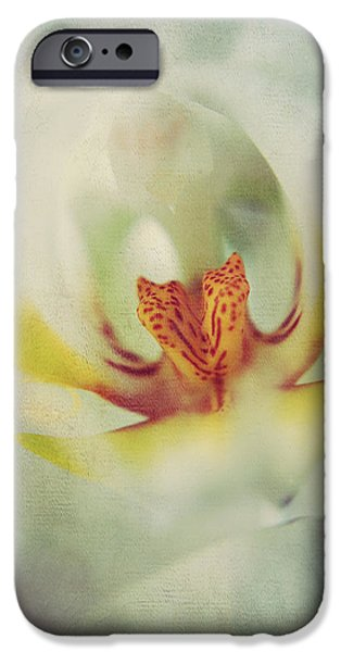 White Orchid iPhone Cases - True iPhone Case by Laurie Search