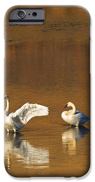 Trumpeter Ballet iPhone Case by Mike  Dawson
