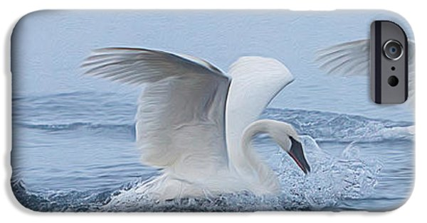 Swans... iPhone Cases - Trumpeter Swans Touchdown iPhone Case by Patti Deters