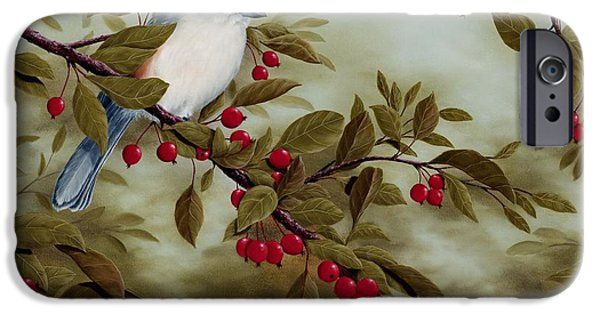 Berry iPhone Cases - Tufted Titmouse iPhone Case by Rick Bainbridge