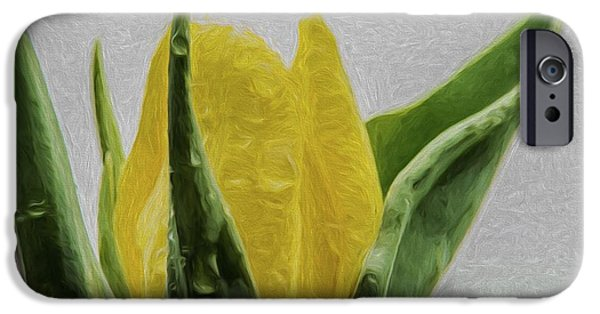 Painter Photographs iPhone Cases - Tulip 2 Digital Painting Flower iPhone Case by David Haskett
