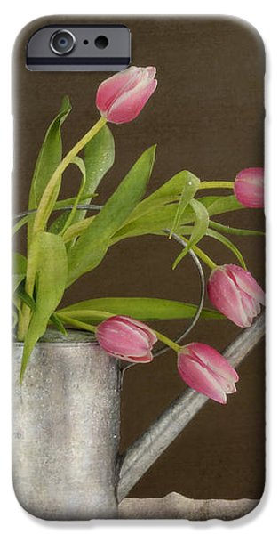 Tulip Bouquet  iPhone Case by Alana Ranney