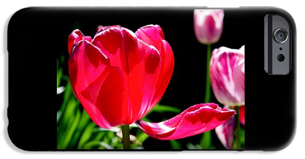 Red iPhone Cases - Tulip Extended iPhone Case by Rona Black