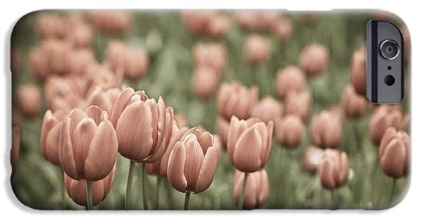 Floral Photographs iPhone Cases - Tulip Field iPhone Case by Frank Tschakert